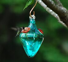 Hummingbird by f6rider