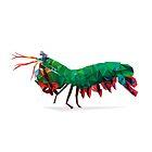 Geometric Abstract Peacock Mantis Shrimp by AquanautStudio