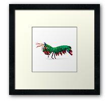 Geometric Abstract Peacock Mantis Shrimp Framed Print