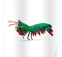 Geometric Abstract Peacock Mantis Shrimp Poster