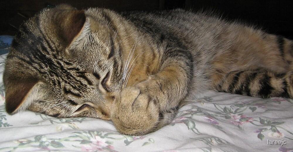 Now I Lay me down to Sleep... by lareejc