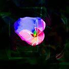 Flower  Wower by Al Bourassa