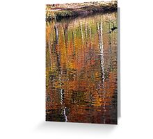 Mirror Mirror in the Water Greeting Card