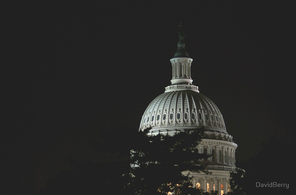 US Capitol at Night by DavidBerry
