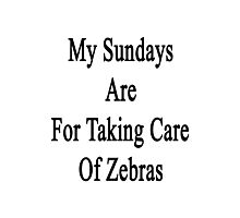 My Sundays Are For Taking Care Of Zebras  Photographic Print