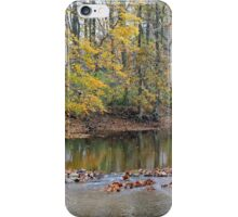 Down by the old mill stream iPhone Case/Skin