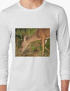 Grazing! Long Sleeve T-Shirt