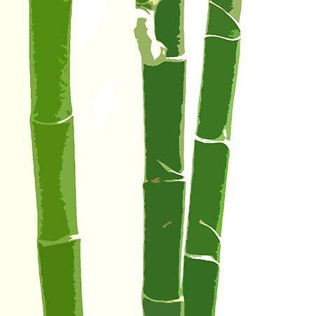 Bamboo Beauty by LindaLou1952
