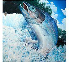 Salmon. Photographic Print
