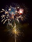 Fireworks by Bill Wetmore