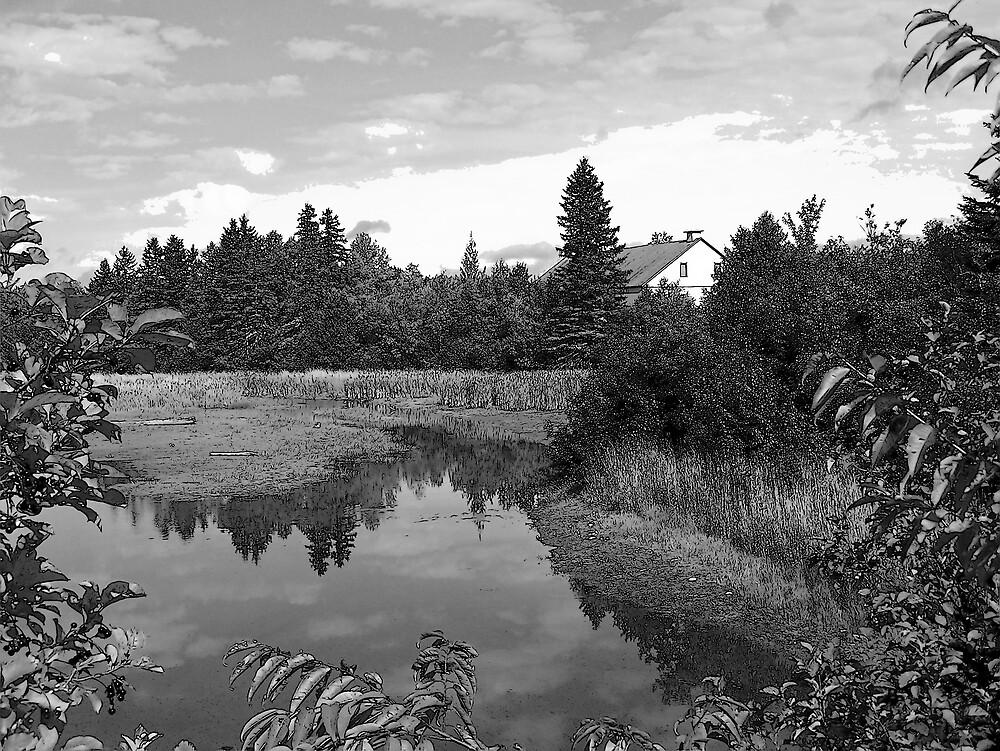 Pond Landscape by Gene Cyr