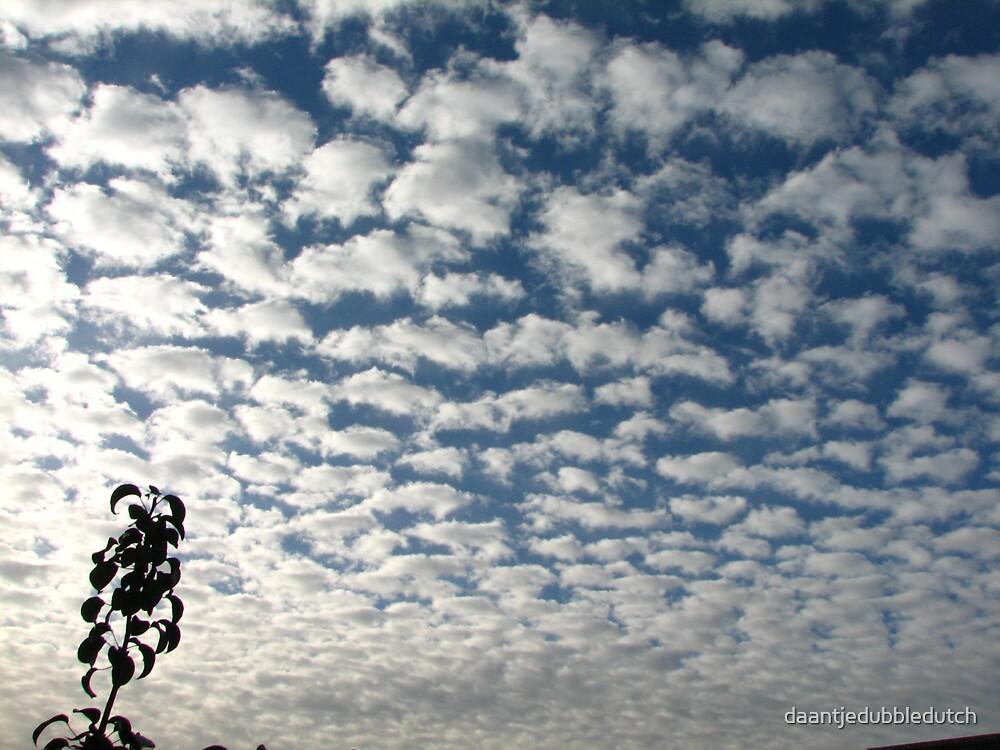 cotton sky by daantjedubbledutch