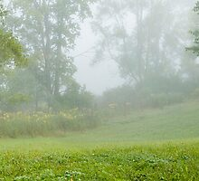 Morning fog by SallyOPhoto