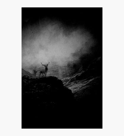 Highlands............. Photographic Print