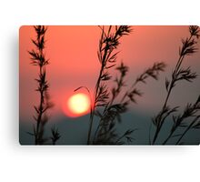 Last touch Canvas Print