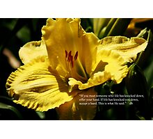 daylily with quote Photographic Print
