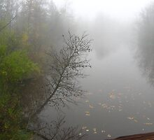 Misty River by kari