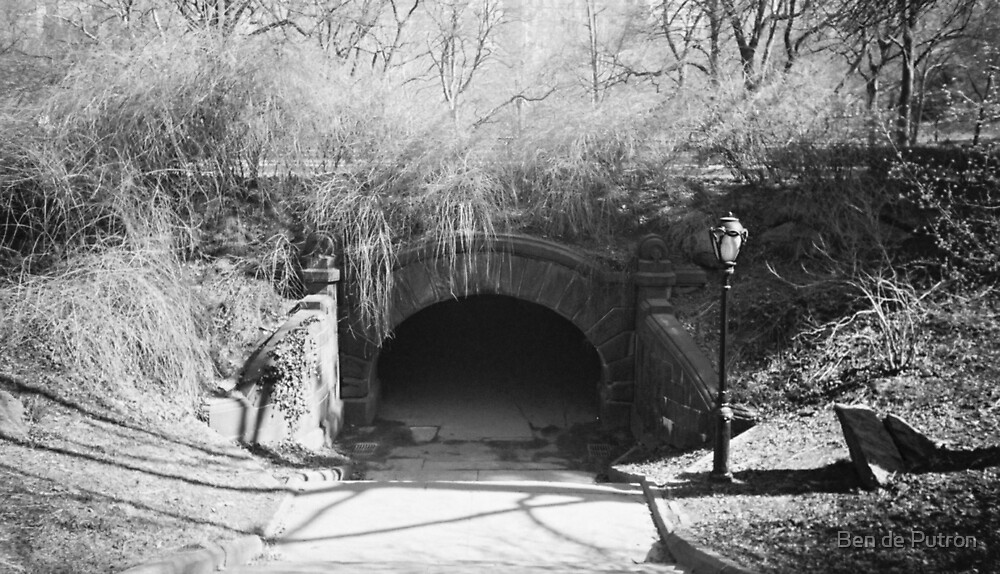 Tunnel in Central Park by Ben de Putron