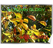 Autumn Glory - Cover Shot Poster