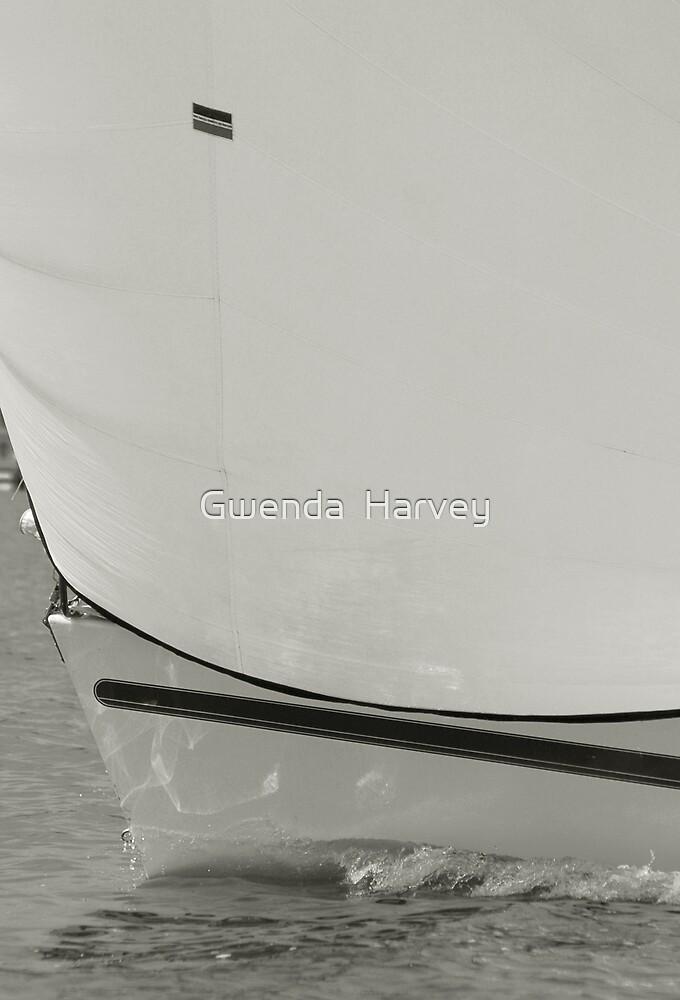 Classic Sailng by Gwenda  Harvey