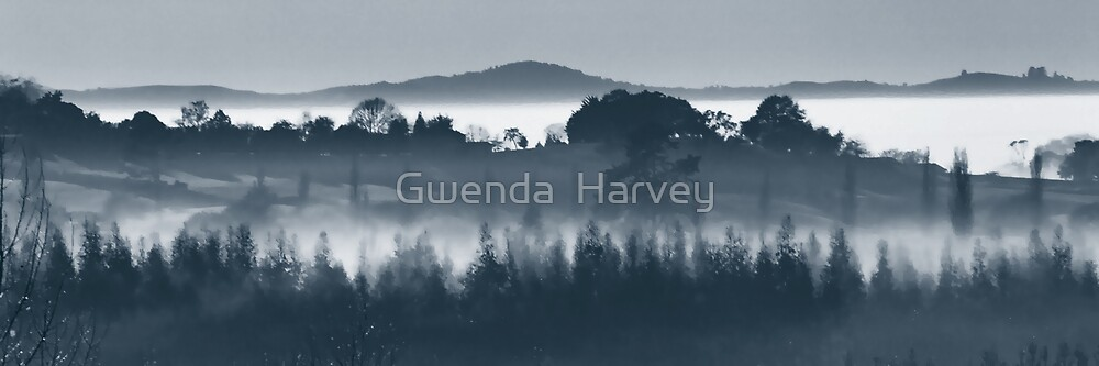 Ohaupo Winter 1 by Gwenda  Harvey
