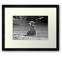 Creek Boy Framed Print