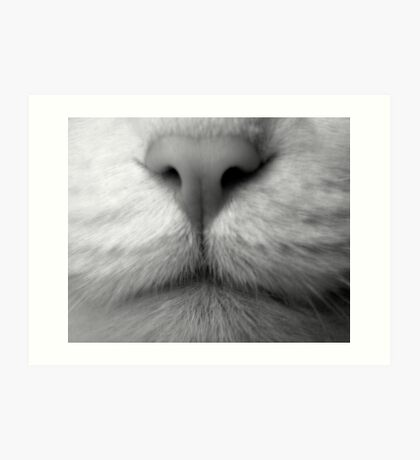 The Nose that Knows Art Print