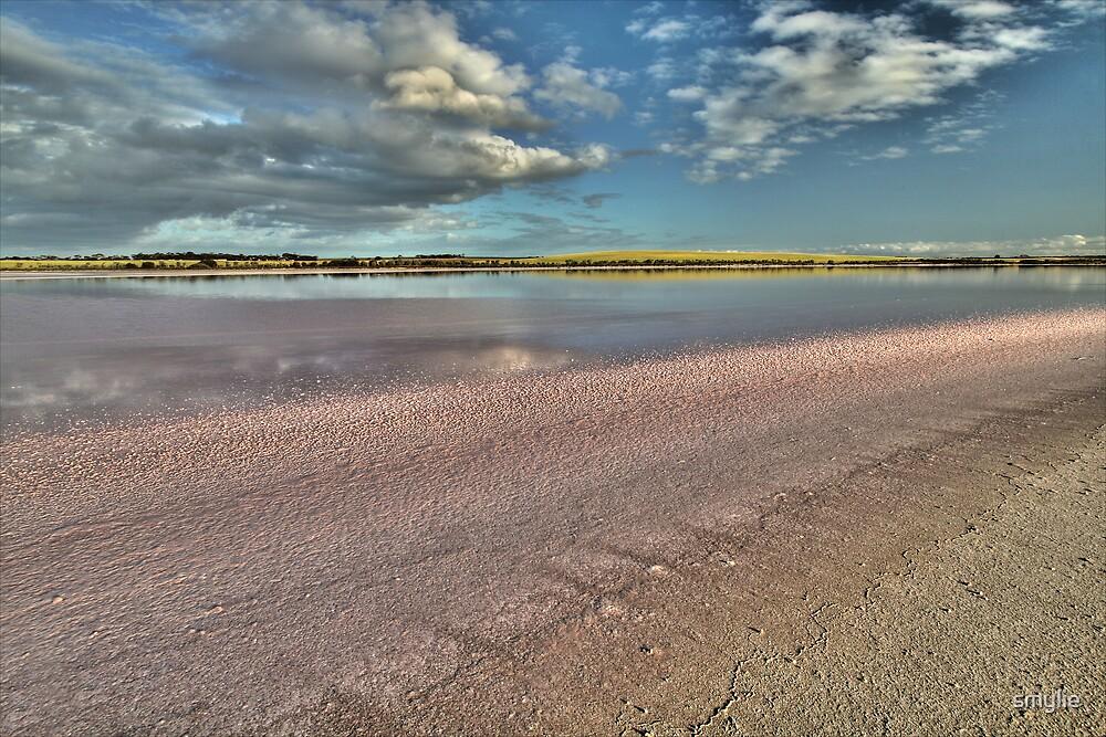 Pink Salt by smylie