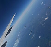 Flight by bluesocks