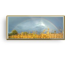 FULL RAINBOW Metal Print