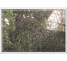 Downpour Caught in the Sunlight Photographic Print