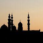 Cairo at Dusk by marycarr
