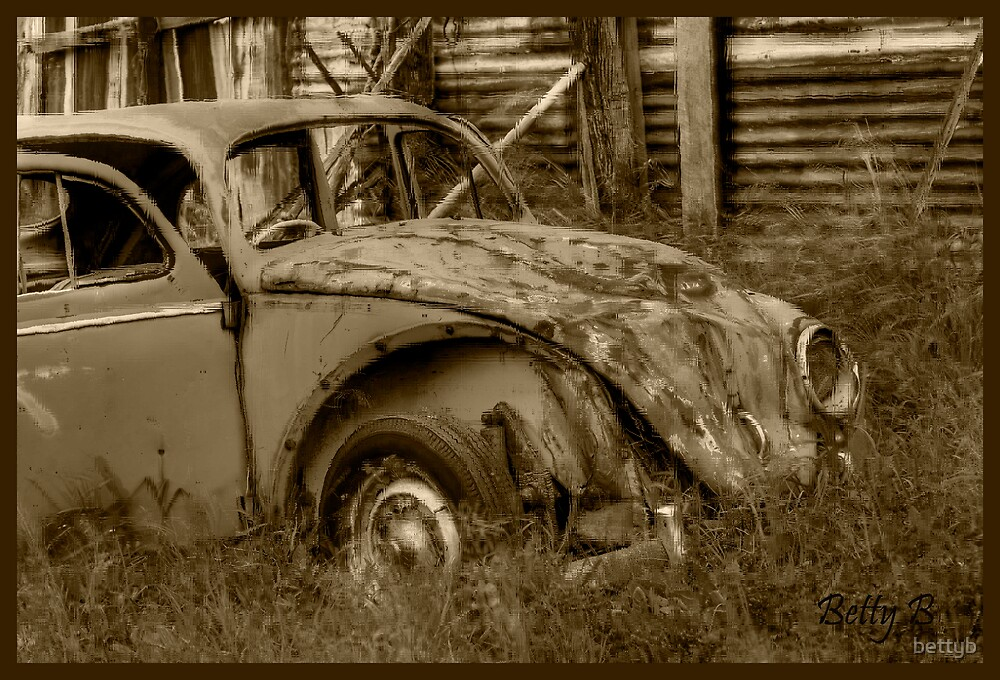 VW by bettyb
