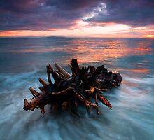 Adrift by DawsonImages