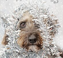 Humorous Christmas Card - Dog Wearing Tinsel by Natalie Kinnear