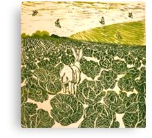 Cabbage Field Hare Canvas Print