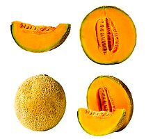 Fresh Cantaloupe Isolated by travis manley