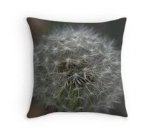 Make a wish as you blow...... Throw Pillow