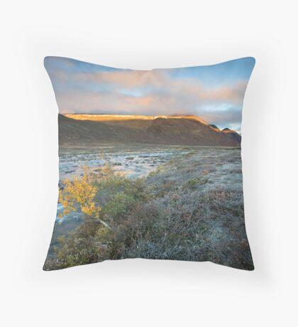 The Last Morning of Fall Throw Pillow