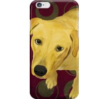 Blond Labrador Mix on Burgndy and Sage Back iPhone Case/Skin