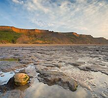 The Naze by Marc Bedingfield
