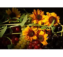 Sunflowers and Grapes Photographic Print