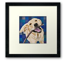 Blond Labrador Smiling with Joy, Chewing a Stick Framed Print