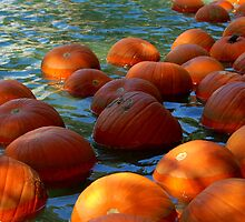 Floating Pumpkins by Brandon Marshall