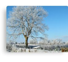 An Irish Winter land-kilkenny Canvas Print