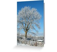 winter in kilkenny Ireland. Greeting Card