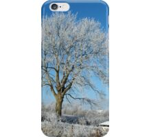 winter in kilkenny Ireland. iPhone Case/Skin