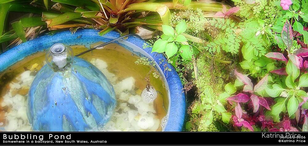A Bubbling Pond by Katrina Price