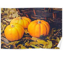 Three little pumpkins, autumn leaves and a basket Poster
