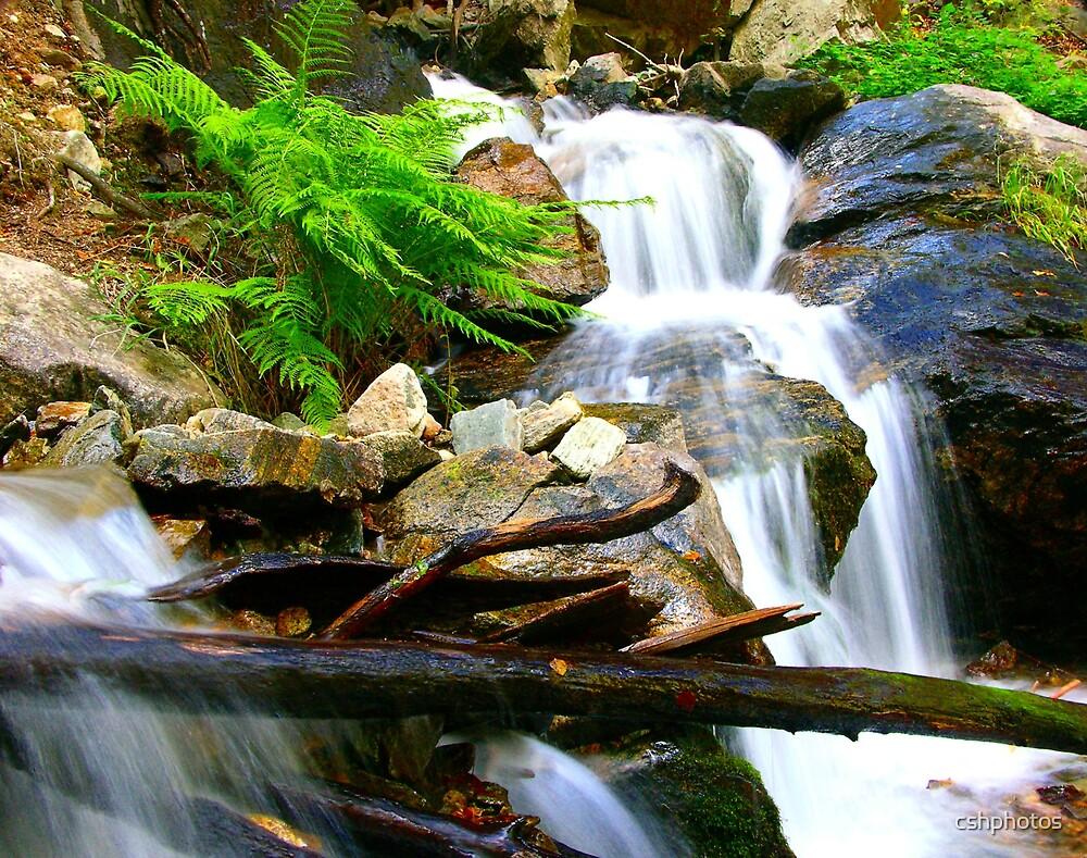 Mountain Waterfall by cshphotos